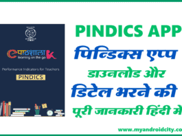 Performance indicators for Elementary School Teachers (PINDICS)