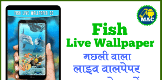machli-fish-wala-wallpaper-download