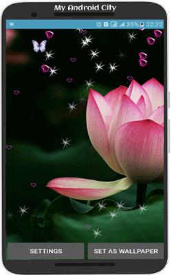 lotus-live-wallpaper